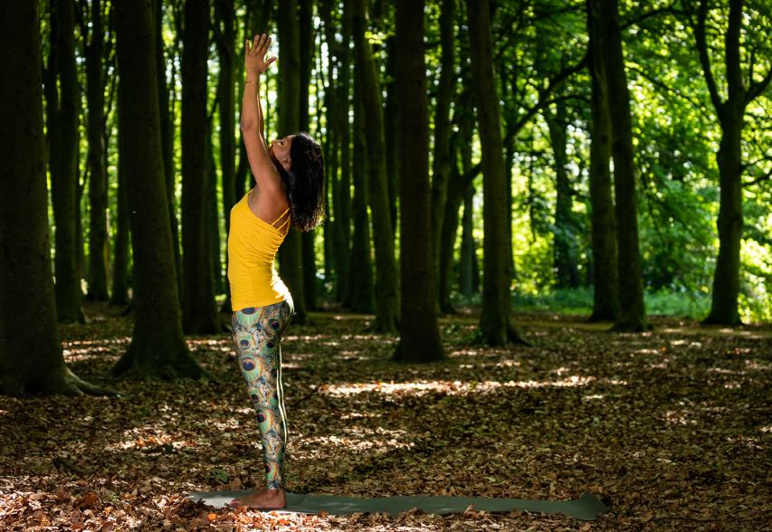 Yoga in Rijswijk, yogales Rijswijk, yoga Rijswijkse Bos, everything is Om, yogastudio in Rijswijk